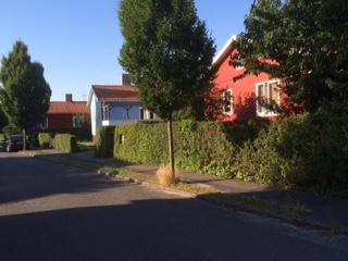 Bild från Malmøvej